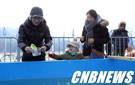 [인제]인제 빙어축제 첫 주말 8만여명 찾아 '성황'