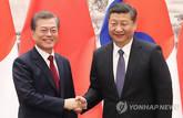 文대통령-시진핑, 한반도 비핵화 등 4대원칙 합의
