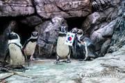 [구병두의 세상읽기] 남극發 '나비효과'…인류대재앙 온다