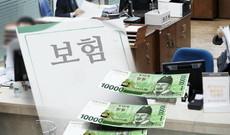 [연중기획-기업정책 핫이슈(44)] '보험 약관' 누가 만드나…작성 주체 논란