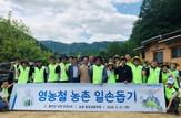 NH농협은행, 자매결연마을에서 영농철 일손돕기