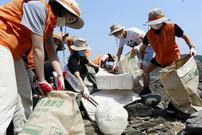 [다시, 친환경(下)] 현대차·아모레·LG… '플라스틱 재순환' 나선 기업들