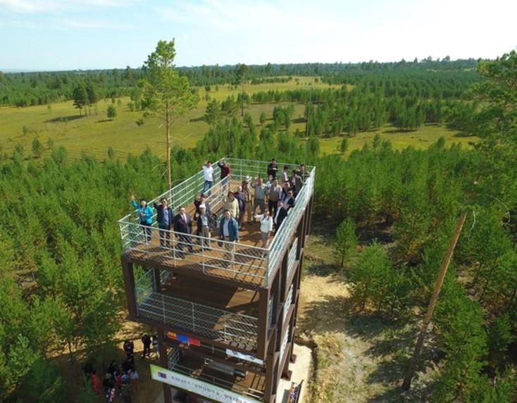[기업과 문학⑫] 숲·도시·문학…유한킴벌리의 '힐링' 이야기