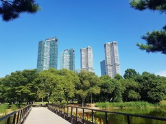 [서울숲 新문화풍경(上)] 한화건설 '갤러리아 포레 미술관' 가보니
