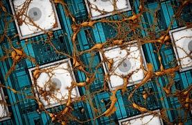 삼성전자, 뇌 닮은 차세대 뉴로모픽 반도체 비전 제시